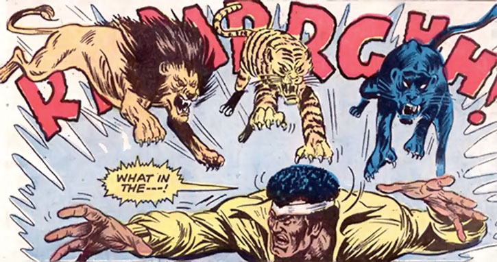 Lionfang's big cats attack Power Man (Luke Cage)