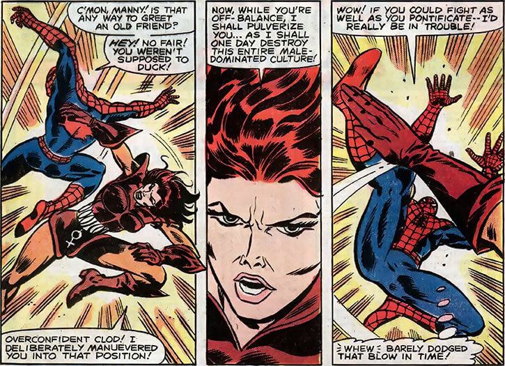 Man-Killer (Marvel Comics) (van Horn classic) vs. Spider-Man