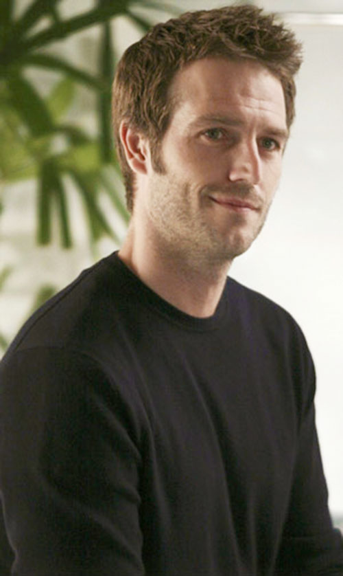 Michael Vaughn (Michael Vartan in Alias)