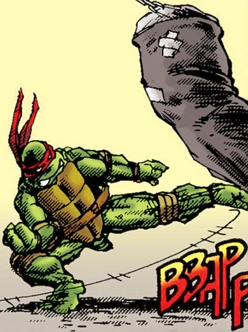 Michealangelo of the Teenage Mutant Ninja Turtles (TMNT comics) kicking a workout bag