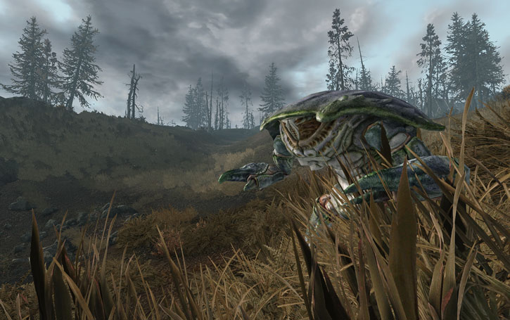 Mirelurk in Fallout 3 among tall grass