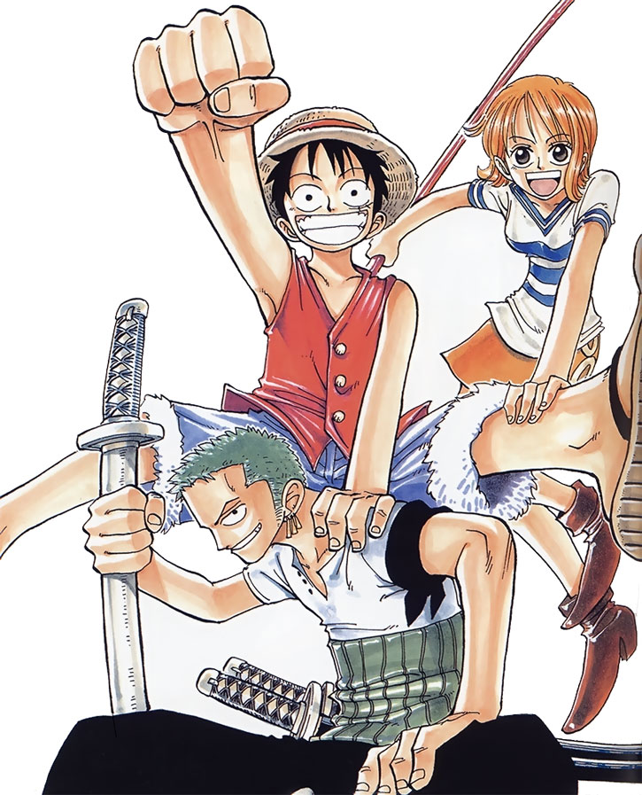 Monkey D. Luffy and allies on a white background