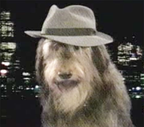 Buck the dog with a fedora (Married With Children)