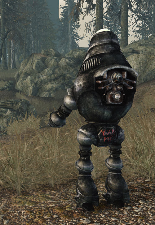 Fallout 3 - Protectron robot back view
