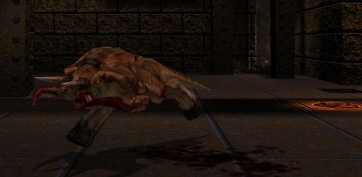 Fiend in Quake (Dark Places textures), running