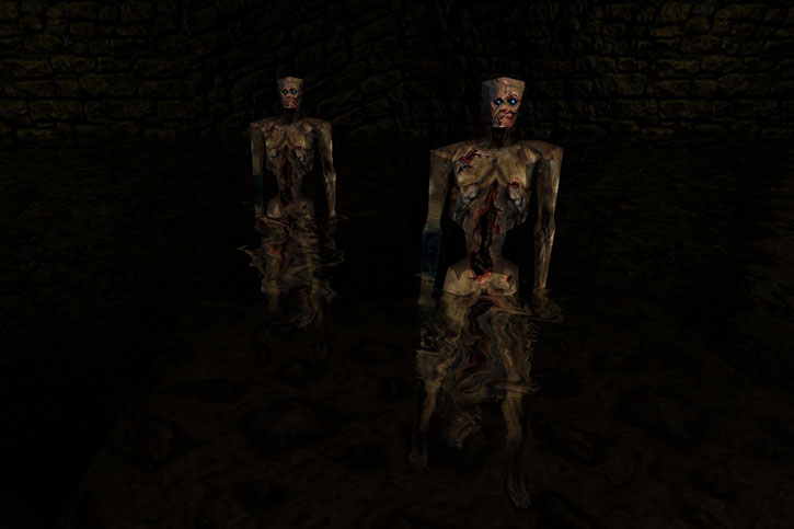 Two Quake zombies (Dark Places textures) in water