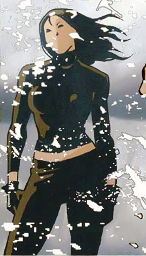 Question (Renee Montoya) (DC Comics) in the snow