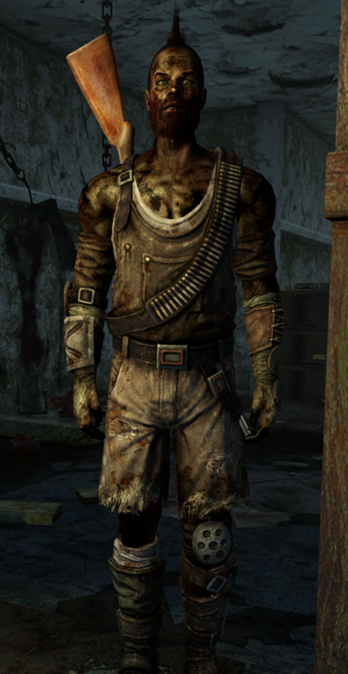 Fallout 3 raider