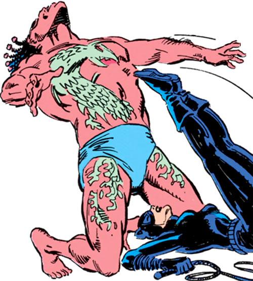 Ramon Bracuda (DC Comics) vs. Catwoman