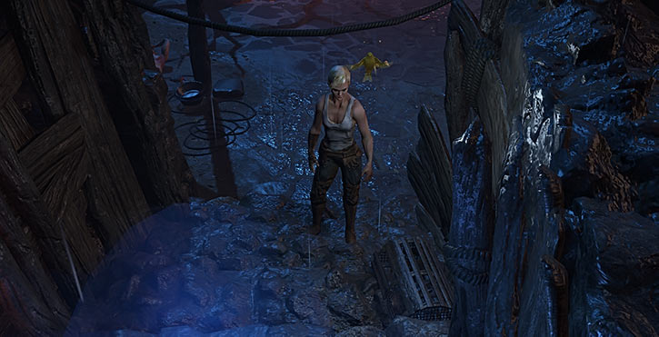 Ranger path of exile canary walls