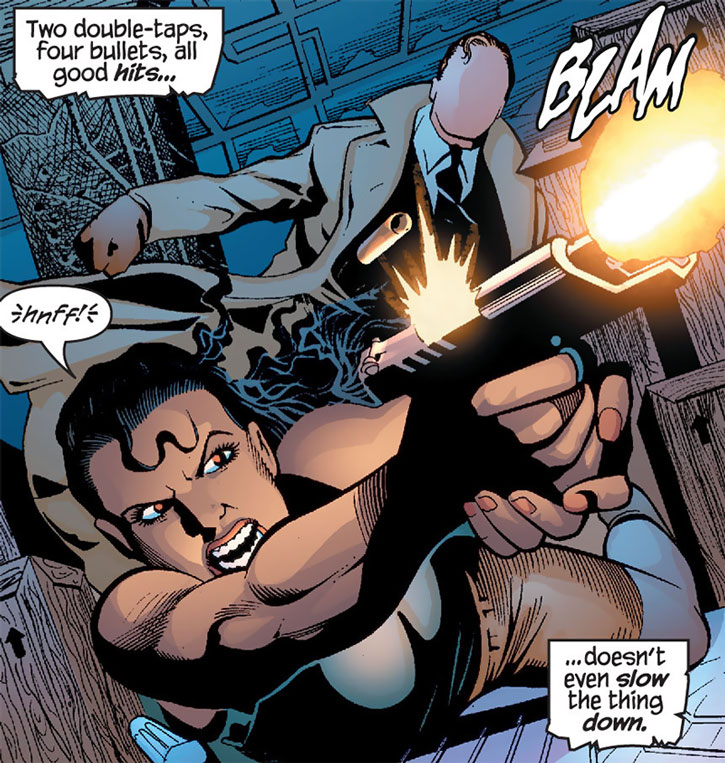 Renee Montoya firing her pistol, and the Question