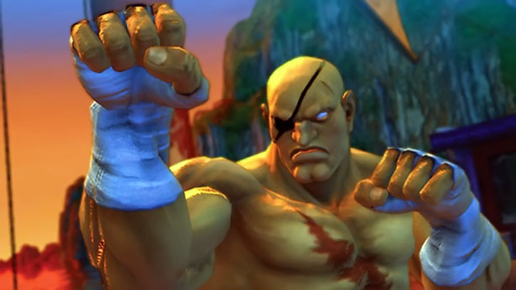 Sagat with his guard up