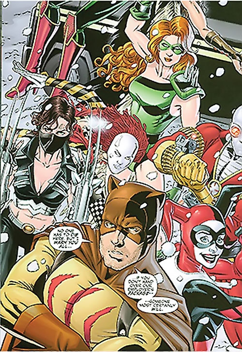 Secret 6 (DC Comics) (Gail Simone version) - roster with Harley Quinn