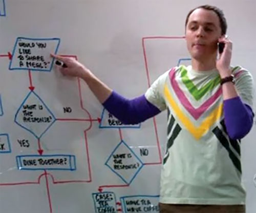 Sheldon Cooper (Jim Parson in Big Bang Theory) on the phone following a flowchart