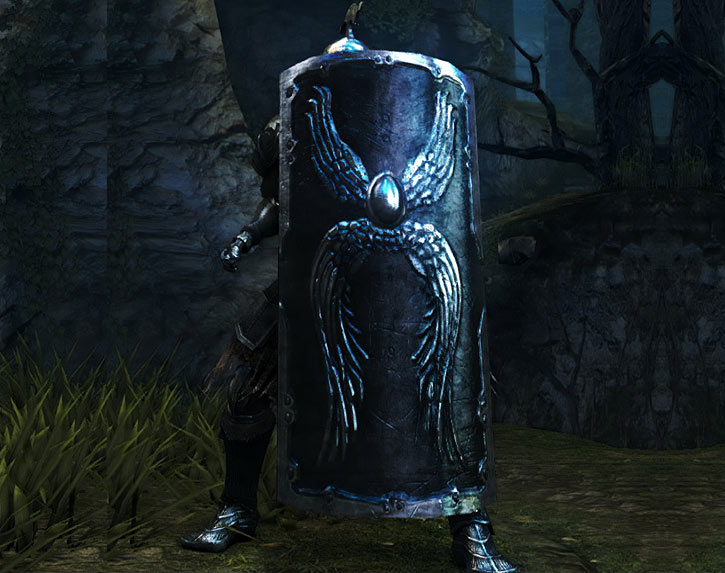 Tower shield in Dark Souls video game