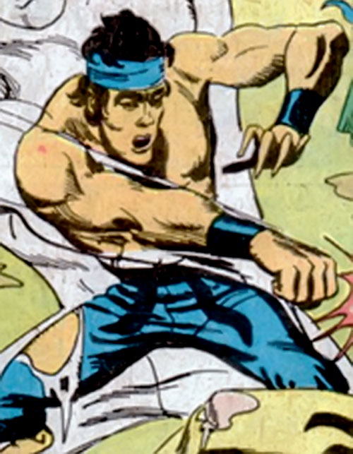 Sing (Richard Dragon enemy) (DC Comics) (Bruce Lee student)