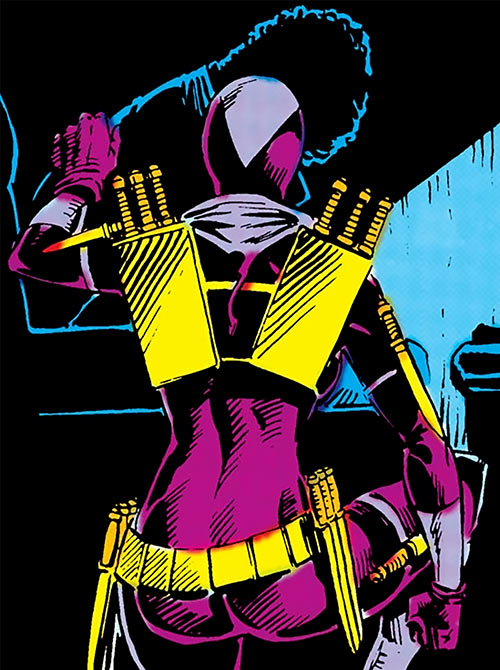 Slash (Batgirl enemy) (DC Comics) back view knives