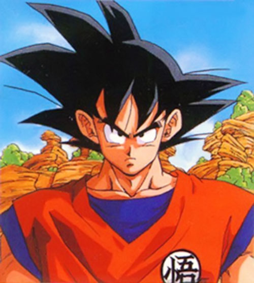 Songoku at 23 (Dragon Ball) portrait