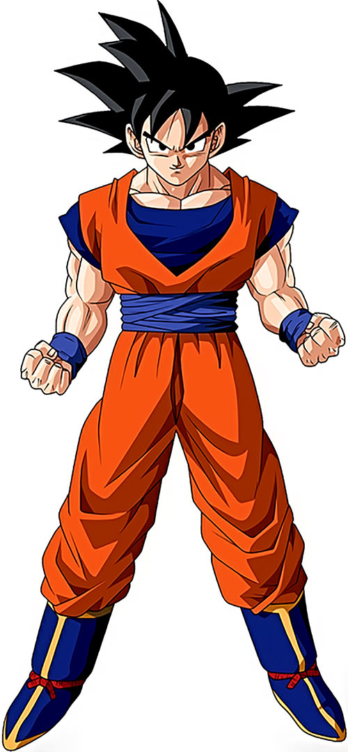 Songoku at 23 (Dragon Ball)