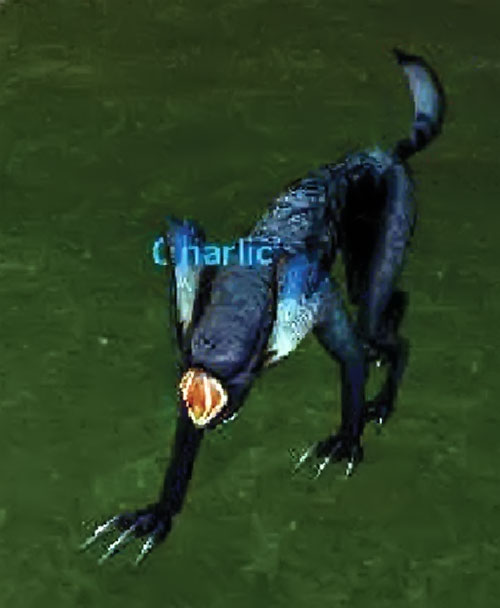 Named sonic wolf in Everquest Luclin