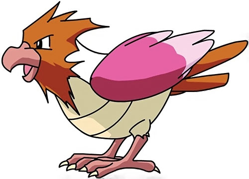 Spearow pokemon