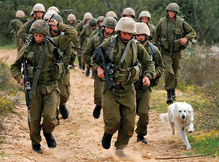Soldiers running in the sand with a dog joining them