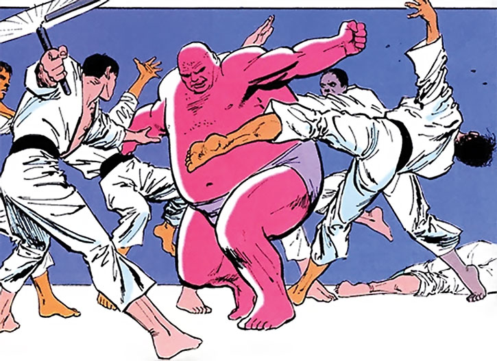The Kingpin training against multiple karateka