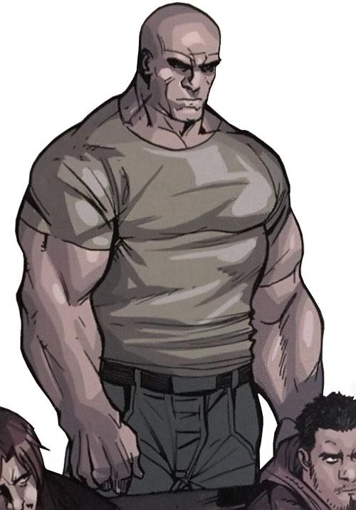 Stonewall of the Secret Warriors (Marvel Comics)