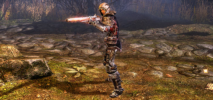 Grim Dawn - Svet with armour and burning gun - Raising flaming weapon