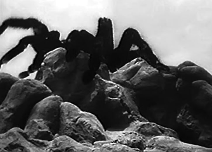 A giant tarantula climbs over rocks, from the 1955 movie
