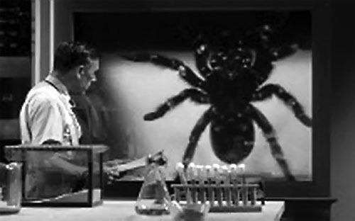 Tarantula 1955 movie - the spider at the lab