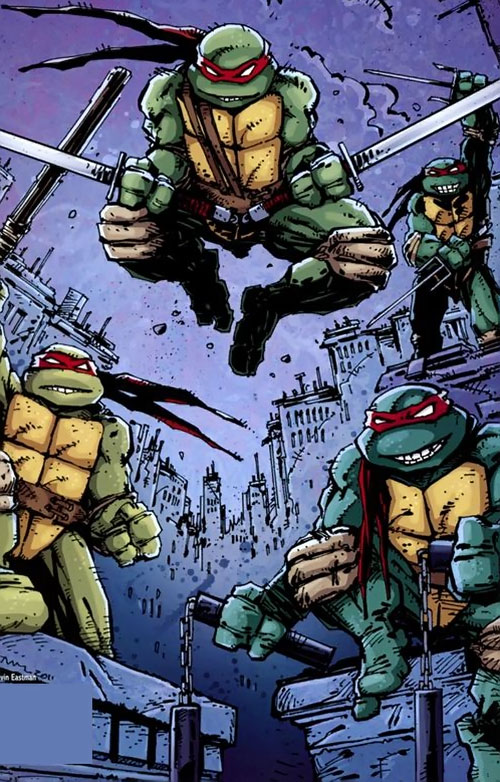 Teenage Ninja Mutant Turtles TMNT (Mirage comics) - urban decay