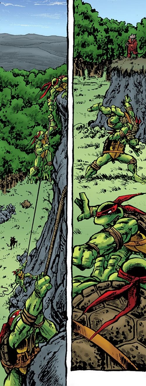 Teenage Ninja Mutant Turtles TMNT (Mirage comics) - training in wilderness