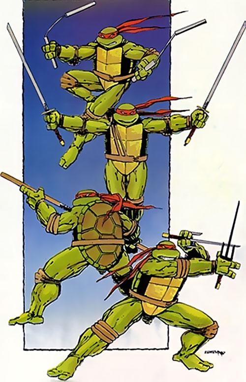 Teenage Ninja Mutant Turtles TMNT (Mirage comics) - team