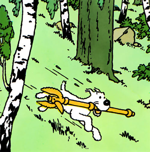 Snowy running in the woods with the sceptre