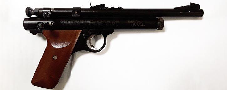 Tranq pistol