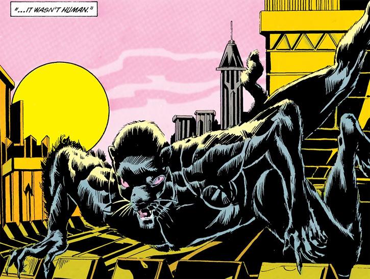The Weasel (John Monroe) prowling on rooftops