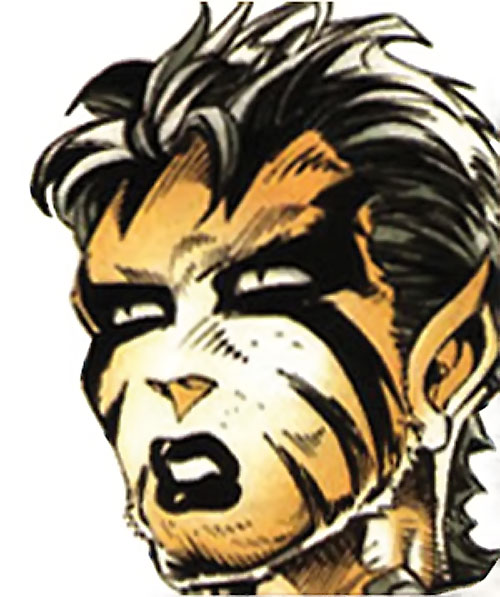 White Tiger of the Heroes for Hire (Marvel Comics) face closeup