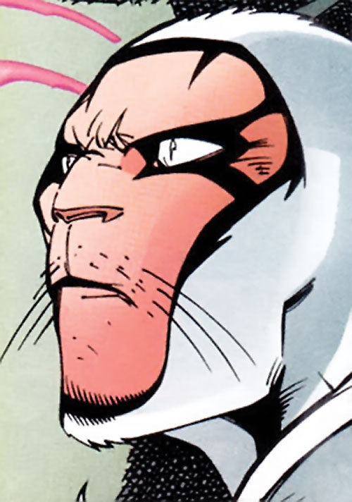 White Tiger of the Heroes for Hire (Marvel Comics) face closeup with cowl