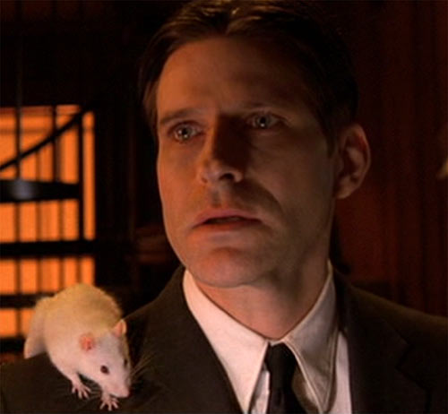 Willard (2003 rat movie with Crispin Glover) with his white rat on his shoulder