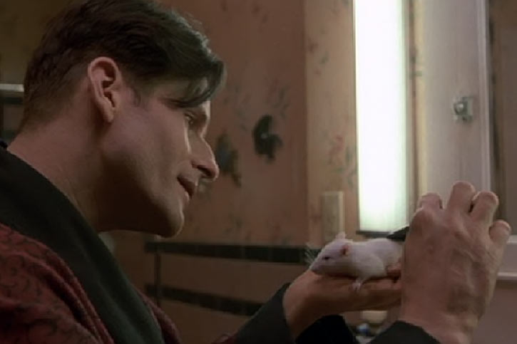Willard (2003 rat movie with Crispin Glover) petting his white rat