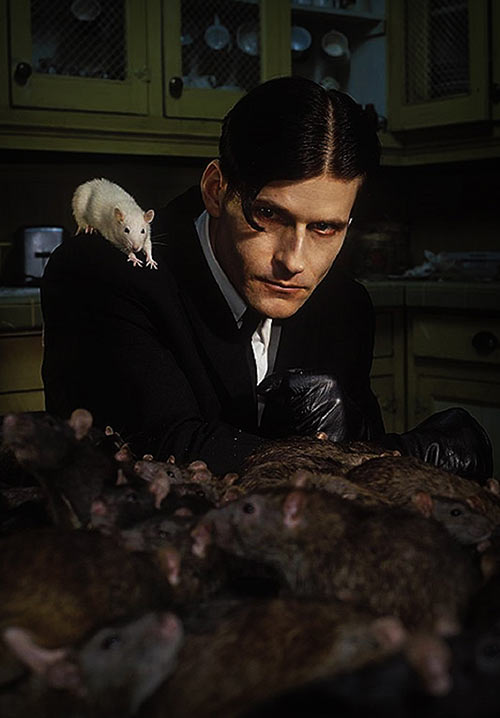 Willard (2003 rat movie with Crispin Glover)