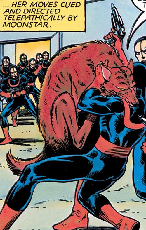 Wolfsbane (New Mutants) (Marvel Comics) (Earliest) wolf form attacking a guard