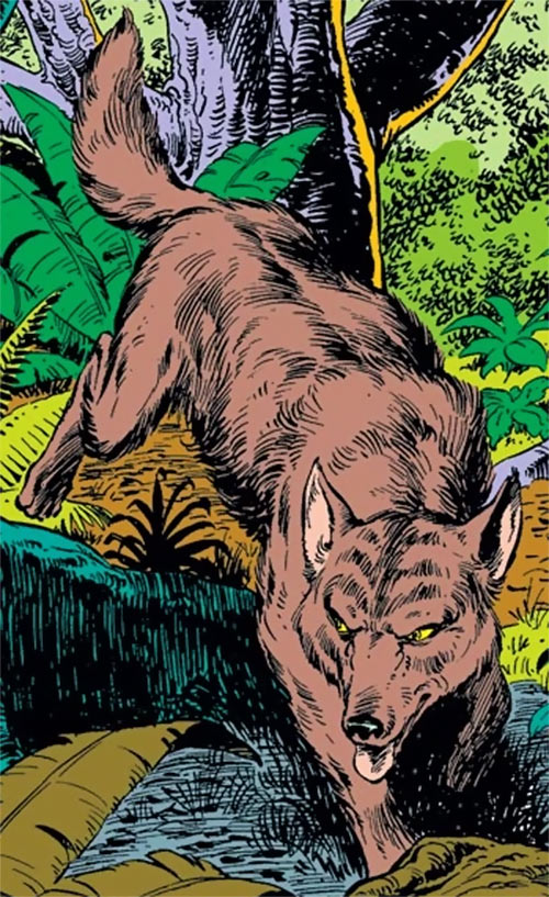 Wolfsbane (New Mutants) (Marvel Comics) (Earliest) wolf form in the jungle