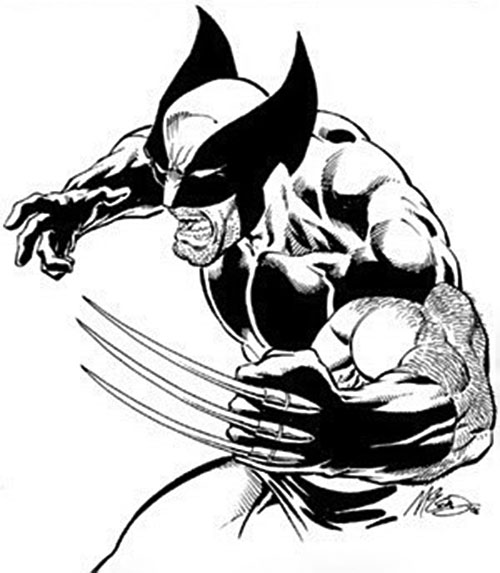 Wolverine (Marvel Comics) B&W sketch by Bob McLeod