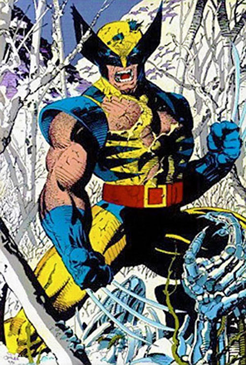 Wolverine (Marvel Comics) by Jim Lee