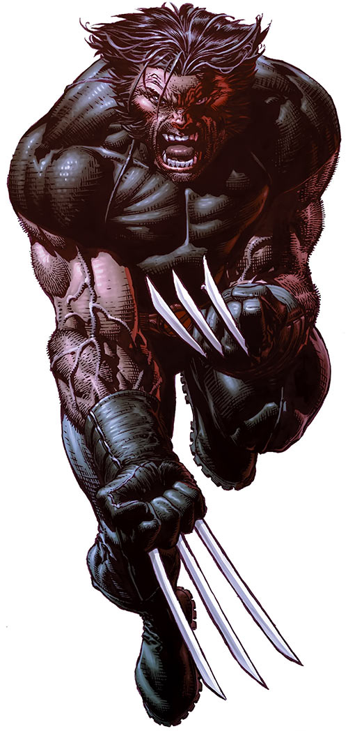 Wolverine (Marvel Comics) in black with claws out