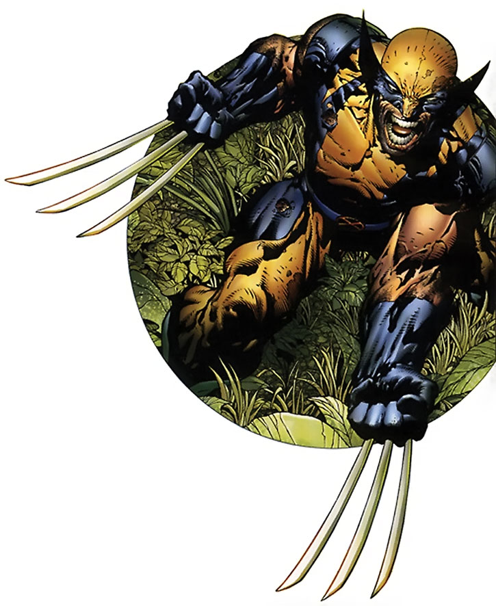 Wolverine in a jungle