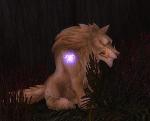 World of Warcraft - Draenei shaman - Ravenstill - wolf form night